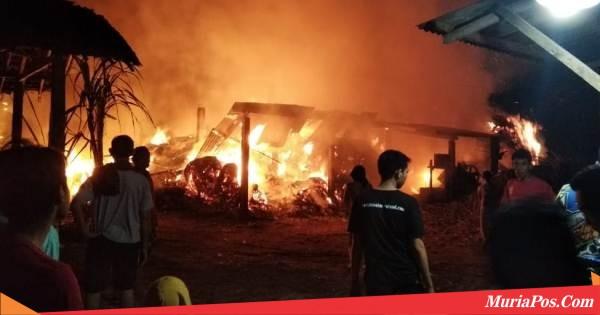 Api Melahap Gudang Giling Tebu di Desa Piji Dawe Kudus